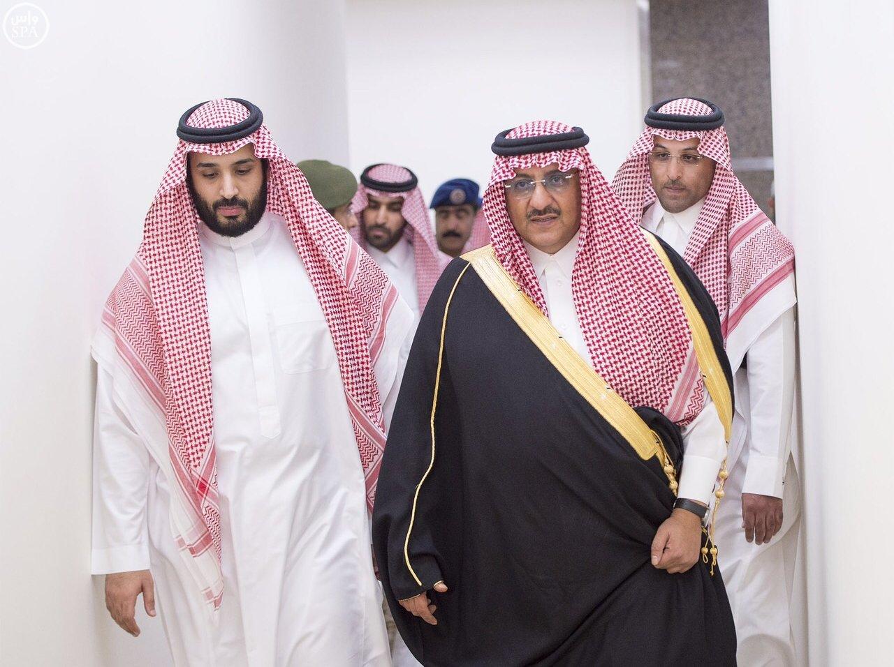 تزامنا مع انطلاق مهرجان ولي العهد للهجن بالطائف فعاليات عالمية في قرية الهجن بحديقة الملك فيصل الوطن الآن صحيفة سعودية